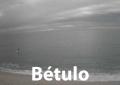 betulo